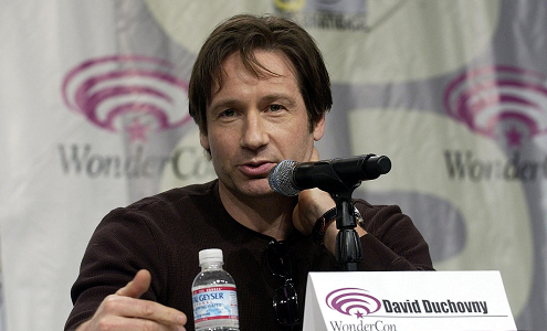 david-duchovny-profil.png