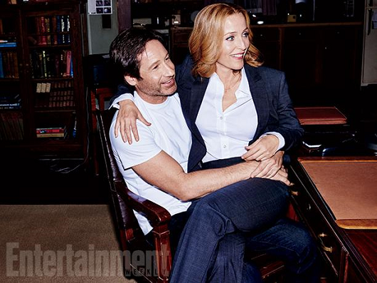 entertainment-weekly-david-gillian-001.png