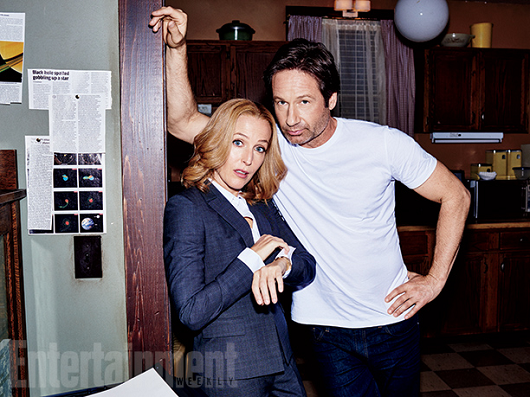entertainment-weekly-david-gillian-002.png