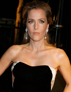 gillian-anderson-bfi-2011-film-festival-awards-london-26102011003-small.png