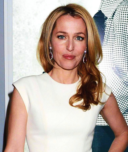 gillian-anderson-dior-london-15–03–2013–002-small.png