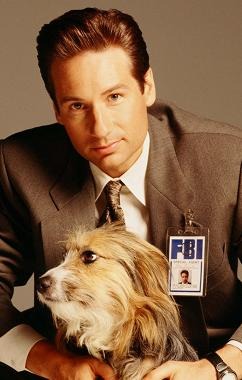 xfiles-promo-david-duchovny-and-blue-002-small.jpg